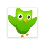 Duolingo - Old version for Android