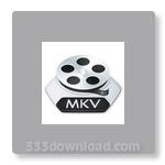 MKV Player - Download for Windows